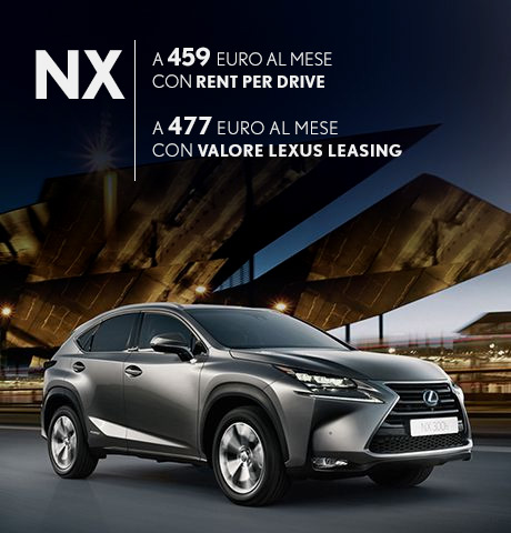nx promo business ammortamenti