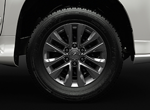 GX460 2017 SportFeatures 18Alloys 300x220 Sport SIDE 2017