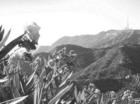 Vista del iconico Hollywood en la lejanía