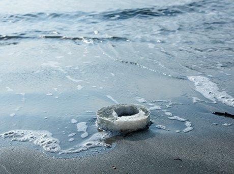 Aplicación del uso del agar en el mar