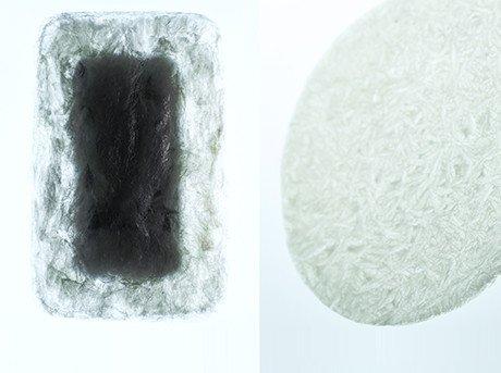 Proyecto que explora de qué forma se puede usar el agar