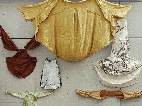 Prendas de vestir para seis tipos de animales de materiales diversos