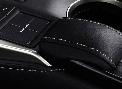 Bordados en tapicería de cuero negro del NX 300h