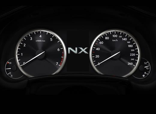 NX 200 image 004