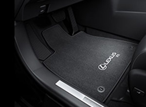 winter protection pack floor mats 005