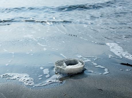 Spugna rotonda bianca e grigia sul bagnasciuga di una spiaggia