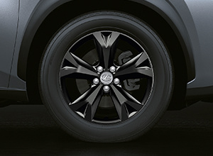 NX300h SportEdition Features AlloyWheels 300x220 1