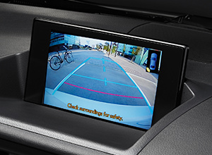 CT200h BusinessEdition Features ParkingAssist