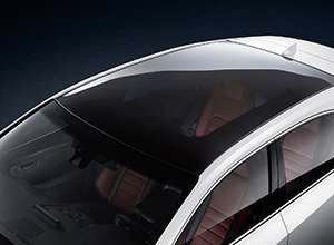 Panoramisch dak van een zilveren Lexus NX300h Sport Edition